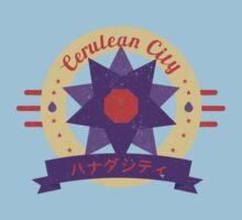 Cerulean City Gym by Cassandra  Downs
