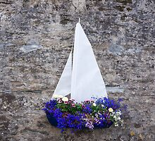 sailing wall art by Anne Scantlebury