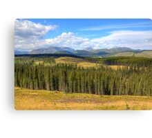 Domain of the Mountain Horse Canvas Print