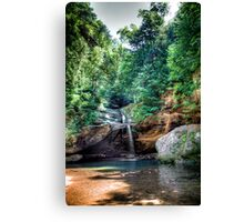 Forest Pool -- Hocking Hills Canvas Print