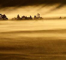 27.8.2013: Sunrise in Torronsuo National Park III by Petri Volanen