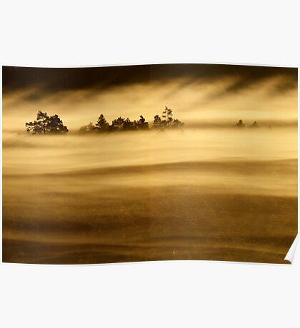 27.8.2013: Sunrise in Torronsuo National Park III Poster