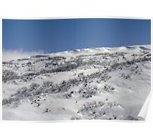 Ridges in the snow I Poster