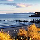Dawlish Gold by ImageMonkey