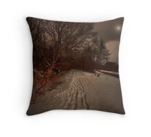 THE CHILL OF WINTER WHISPERS ON THE LAST SUMMER WINDS Throw Pillow
