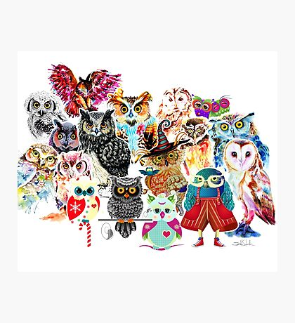 Owls collage Photographic Print