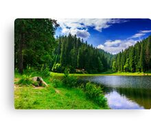 the contemplation of the beautiful scenery Canvas Print
