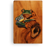 Pyrography: Red Eyed Tree Frog Canvas Print
