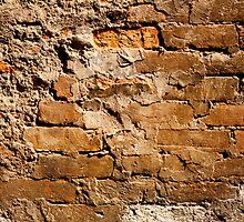 Vintage Brick Wall by visualspectrum