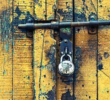 Vintage Lock & Door by visualspectrum