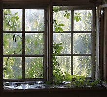 Abandoned asylum II. Windows. Old Lier Mental Hospital, Norway. Built 1921, closed 1985. by UpNorthPhoto