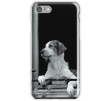 Chien curieux iPhone Case/Skin