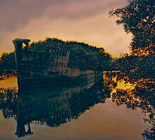 Homebush Bay shipwreck by Chris Brunton