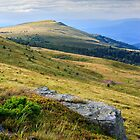 stone at the way to far away mountain by pellinni