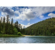coniferous forest on the shore of a mountain lake Photographic Print