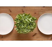 Lettuce For Lunch Photographic Print