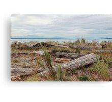 Boundary Bay Canvas Print