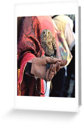 The Miniature Owl by ivDAnu