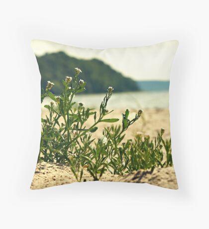 Port Oneida Throw Pillow