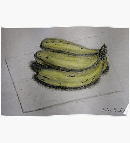 Bananas Sketch - Still Life Poster
