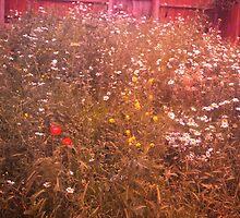 Urban Meadow - London by Jessica Reilly