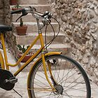 Yellow Bicycle by Chester Tugwell