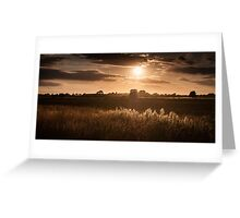 Sunset over Fields and Grasses Greeting Card