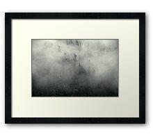 Mist Forrest Framed Print