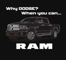 Why Dodge? by Fl  Fishing