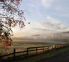 Counrty Morning Mist by AngelGirl21030