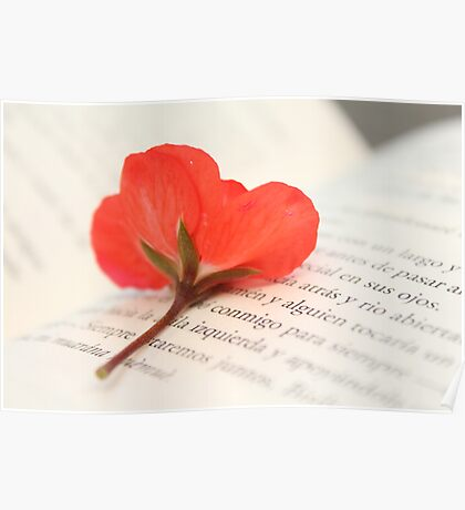 Red flower and book Poster
