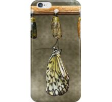 Just Born Butterfly iPhone Case/Skin