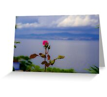 Beauty of Rose Greeting Card