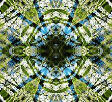 Aquatic Lace 20 by SRowe Art