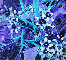 Glory of the Snow - Violet and Turquoise by SRowe Art