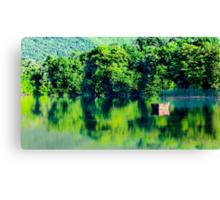 The Green Lake  Canvas Print