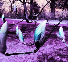 Magnolias in an Alien World by MSRowe Art and Design