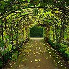 Archway at Buckfast Abbey by Charmiene Maxwell-Batten