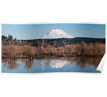 Nisqually Delta in Winter - Washington State Poster