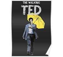 The Walking Ted Poster