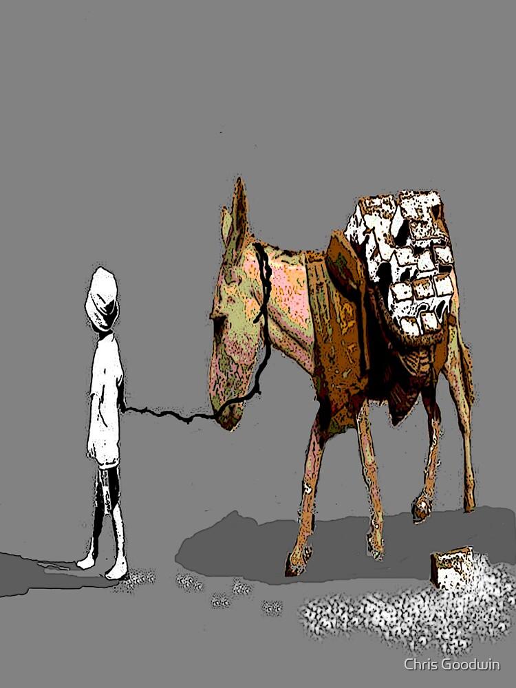 ;drug mule; by Chris Goodwin