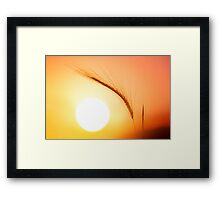 Sunset Guardian Framed Print