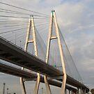 Big Obukhovsky Bridge, St Petersburg by TeaRose