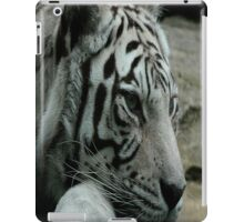 Ride the tiger..You can see his stripes but you know he's clean..you can feel his heart but you know he's mean..Some light can never be seen iPad Case/Skin