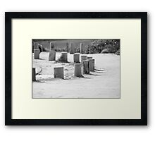 Black and White Stump Framed Print