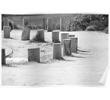 Black and White Stump Poster