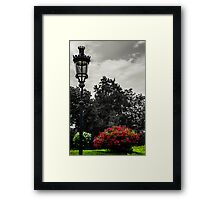 Waiting for the Nightlights Framed Print