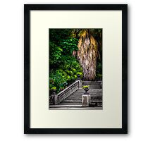 Stairs to Nature Framed Print