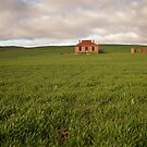 Old Farmhouse, Burra, South Australia by SusanAdey