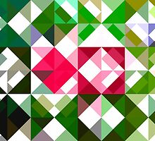 Pink Roses in Anzures 6 Abstract Triangles 1 by Christopher Johnson